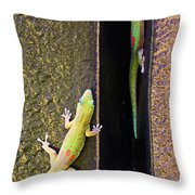 Gold Dusted Day Gecko Throw Pillow