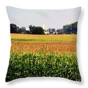 Gold Field Throw Pillow