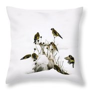 Gold Finches In Snow Throw Pillow