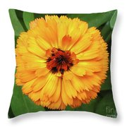 Gold Flower Throw Pillow
