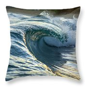 Gold Fold Throw Pillow