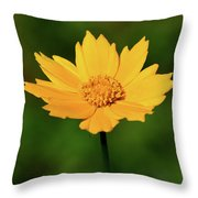 Gold In The Garden Throw Pillow