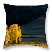 Gold In The Lamar Valley Throw Pillow
