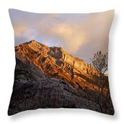 Gold In Them Thar Hills Throw Pillow