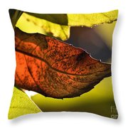 Gold Leaf In Fall Throw Pillow