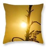 Gold Marsh Throw Pillow