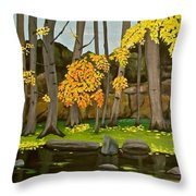 Gold On The River Meadow Park Lyons Co Throw Pillow