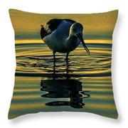 Gold Pond Avocet Throw Pillow