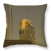 Gold Reflections Throw Pillow