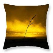 Gold Sunset And Grass Throw Pillow
