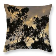Gold Sunset Tree Silhouette I Throw Pillow