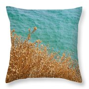 Gold Thistles And The Aegean Sea Throw Pillow