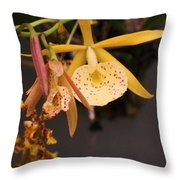 Gold Yellow Orchid  Throw Pillow