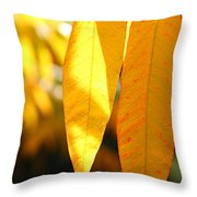 Golden Accent  Throw Pillow