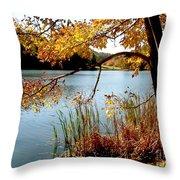 Golden Autumn Lake Throw Pillow
