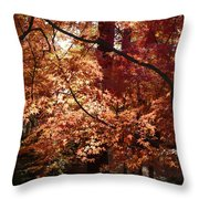 Golden Autumn Sunshine Throw Pillow