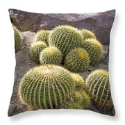 Golden Barrel Cactus Throw Pillow