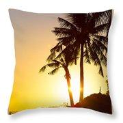 Golden Beach Tropics Throw Pillow
