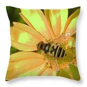 Golden Bee Throw Pillow