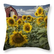 Golden Blooming Sunflowers With Red Barn Throw Pillow