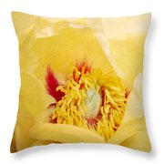 Golden Bowl Tree Peony Bloom Throw Pillow
