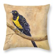 Golden Breasted Starling Throw Pillow