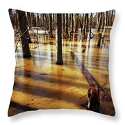 Golden Brown Frozen Pond Throw Pillow