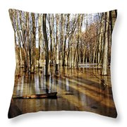 Golden Brown Pond Throw Pillow