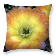Golden Cactus Bloom Throw Pillow