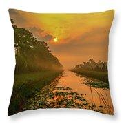 Golden Canal Morning Throw Pillow