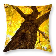 Golden Climb Throw Pillow