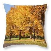 Golden Colors In Autumn Bellavista Park Oregon. Throw Pillow