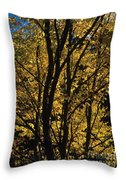 Golden Colors Of Autumn In New England  Throw Pillow