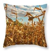 Golden Crop Throw Pillow