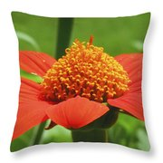 Golden Crown On Red Throw Pillow