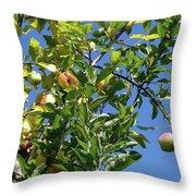 Golden Delicious Danglers Throw Pillow