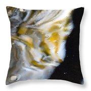 Golden Delta Throw Pillow