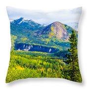 Golden Denali Throw Pillow