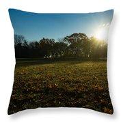 Golden Dew Autumn Sunrise Throw Pillow