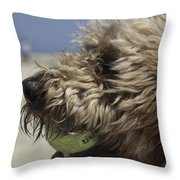 Golden Doodle And His Ball Throw Pillow