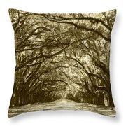 Golden Dream World Throw Pillow