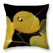 Golden Drop Throw Pillow