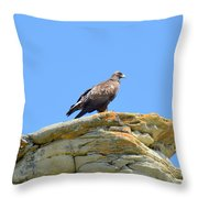 Golden Eagle Lookout Throw Pillow