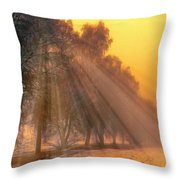 Golden Early Morning Sun Rays On The Farm Chesterhurst L B Throw Pillow