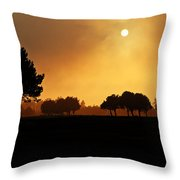 Golden Evening Light Throw Pillow
