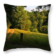 Golden Evening Light Throw Pillow