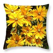 Golden Eyed Susans Throw Pillow
