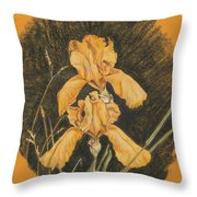 Golden Flags Throw Pillow