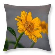 Golden Flower II Throw Pillow
