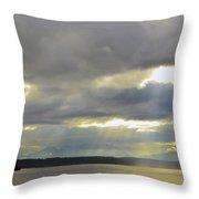 Golden Gardens Sunset Throw Pillow